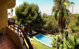 The pool. Rental holiday apartments Benidorm, Costa Blanca